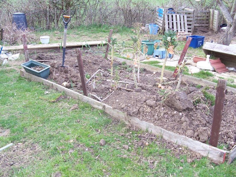 Beds with top up soil