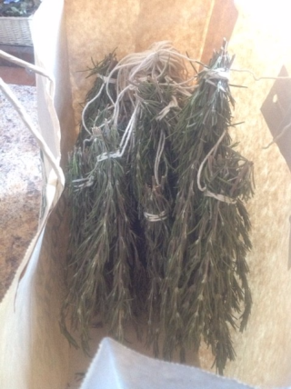 Rosemary bundles