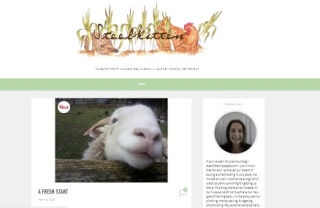 New blogger blog